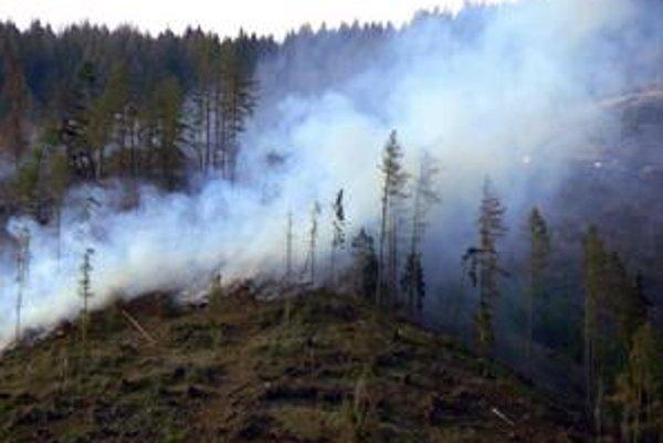 Takáto séria lesných požiarov rad za radom tu nebola dávno. Museli prijať prísne protipožiarne opatrenia.