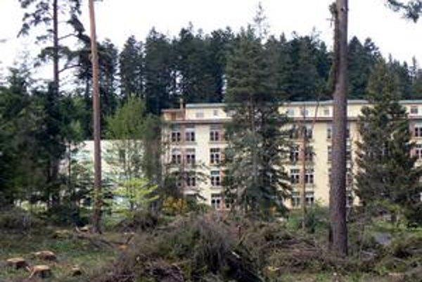 Ponurá nálada. Odchádzajúce stromy akoby symbolizovali náladu Kvetničanov po zániku nemocnice.
