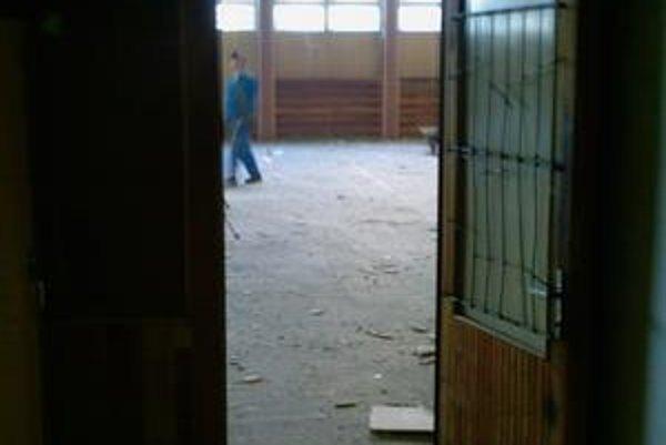 Azbest. V telocvični tohto gymnázia padali stropné dosky. Telocvikárky sa boja nebezpečného azbestu. Hygiena tvrdí, že tam nič nie je.
