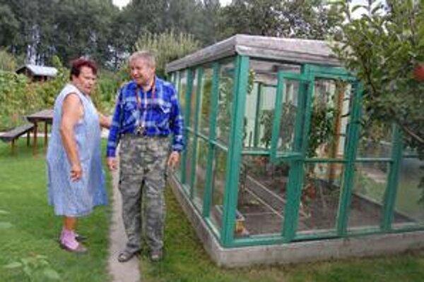 V tomto skleníku si poplietli paradajky s paprikami. Vytrhli ich a nechali tam.