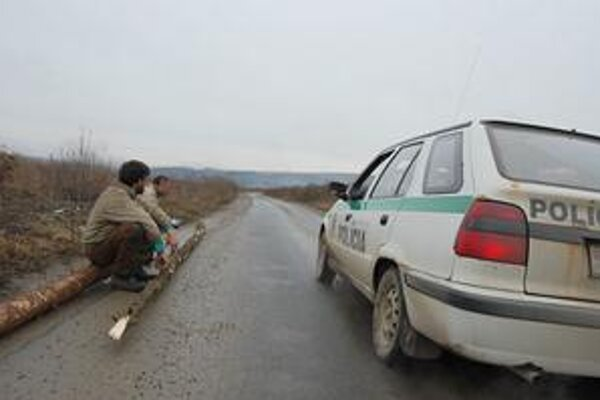 Dvaja osadníci. Sedeli na vyrúbaných kmeňoch, prichytila ich polícia.