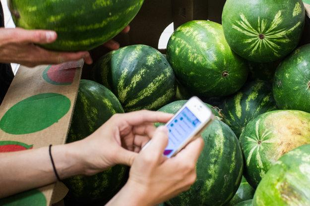 Mobilná aplikácia zisťuje sladkosť melóna na základe piatich otázok.
