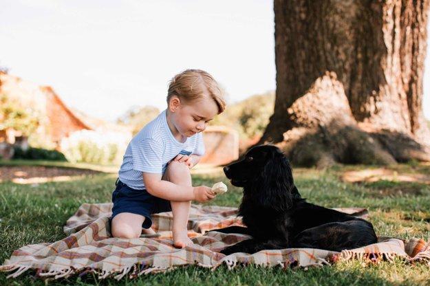 Princ George so psom Lupom.