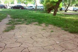 Počasie bolo doposiaľ na zrážky chudobné. Vidieť to aj na pôde.