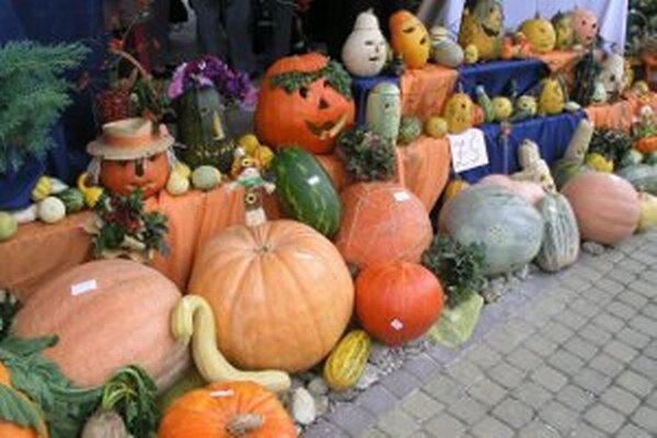 Výstavy úrody sa konajú na viacerých miestach v regióne.
