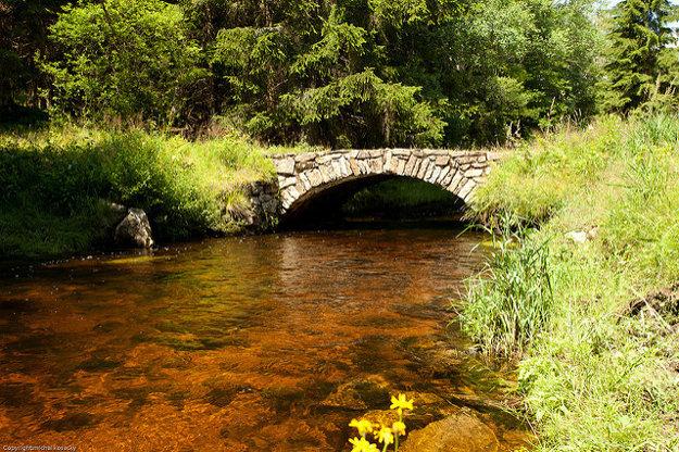 Vchynicko-Tetovský plavebný kanál umožňoval plavenie dreva do riečky Křemelná. Dodnes sa na ňom zachovali mostíky s kamennou klenbou medzi Modravou a Srním.
