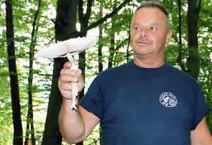 Bratislavčan Miroslav Peiszer sa chváli exemplárom bedle vysokej, ktorú prekvapivo v lete našiel v Strážovských vrchoch.