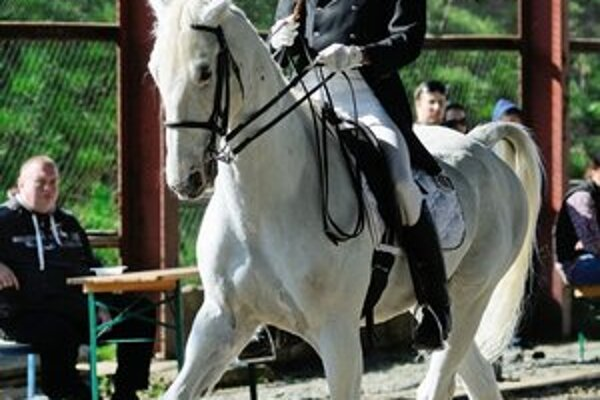 Peter Pošvanc na koni Favory.