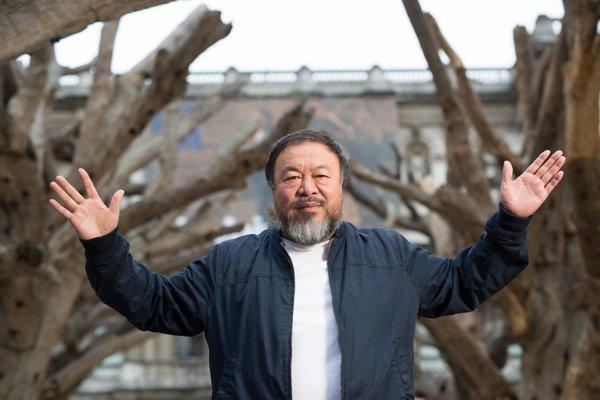 Čínsky umelec Ai Wei Wei použil na svoje dielo trosky po ničivom zemetrasení istromy zčínskych hôr.