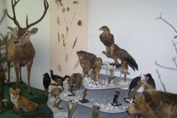 Návštevníci Hornonitrianskeho múzea si môžu pozrieť aj jeho stálu výstavu.