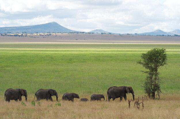 Vnútrozemie v Tanzánii.