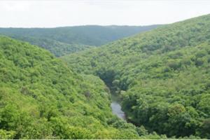 V Podunajsku by mohol vzniknúť ďalší národný park.