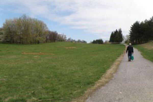 Podľa územného plánu mesta by časť tohto parku mala byť zastavaná.