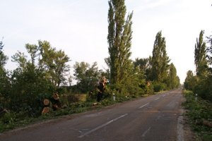 Požiarnikom sa už počas večera podarilo cestu pri Sekuliach sprejazdniť.