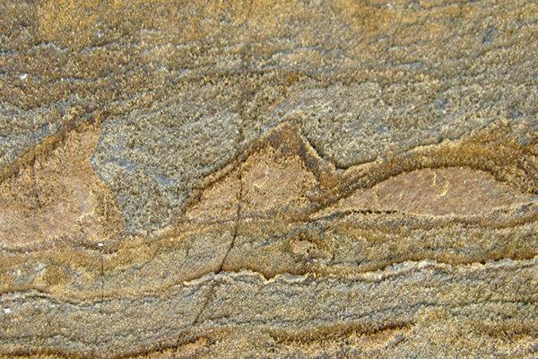 Vedci sa domnievajú, že našli najstaršiu fosíliu na Zemi.