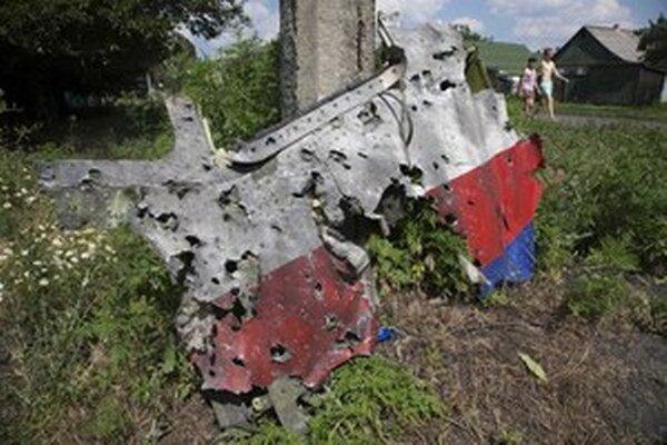 Trosky zostreleného lietadla.