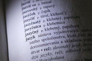 Slovenčina sa stále mení a v poslednom čase ju výrazne ovplyvňuje aj naša čoraz väčšia znalosť cudzích jazykov.