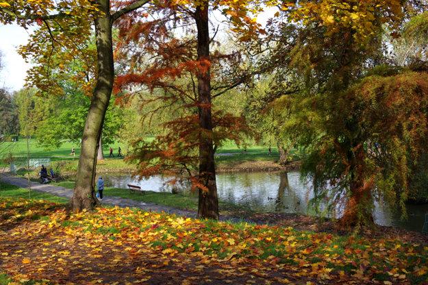 Jesenná Stromovka.