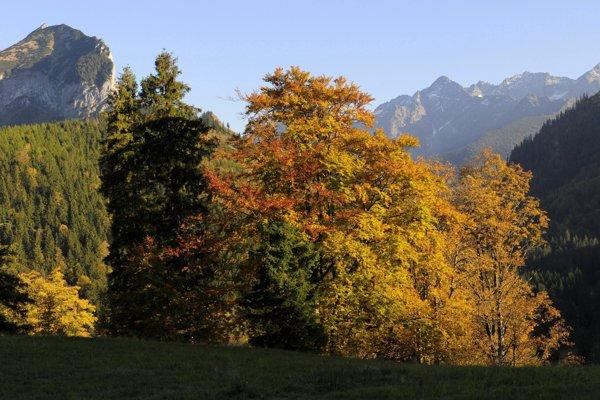 Tatranská jeseň je nádherná.