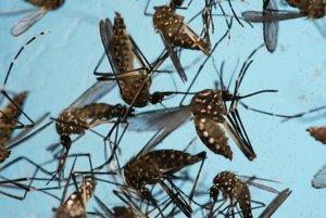Vo Vietname teraz vyčíňa zika aj dengue. Vlani krátko po návrate ztropickej krajiny darovali krv.