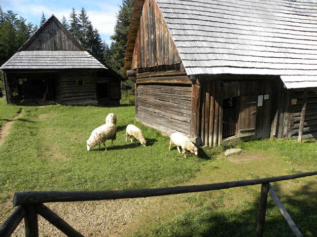 Usadlosť Do Potoka privítala počas sezóny takisto stovky návštevníkov.