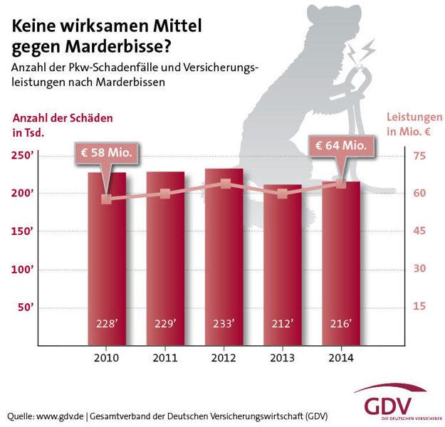Len v Nemecku kuny ročne spôsobia vyše 200 000 škodových udalostí s celkovou škodou okolo 60 miliónov eur.