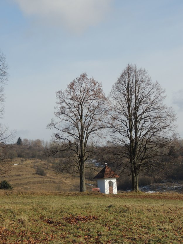 Na snímke je kaplnka pri vstupe do obce Kunešov, kde chce Alojz Patsch vysadiť sekvojovec mamutí.