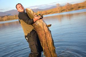 Na rybačku za rekordným sumcom nemusel cestovať do zahraničia. Chytil ho v Kozárovciach.