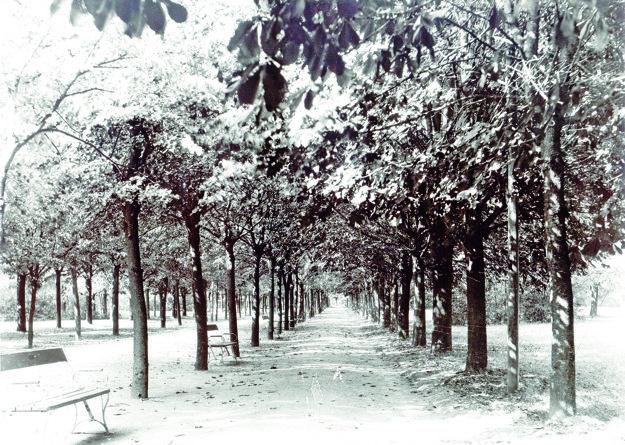 Takto vyzeral park kedysi.