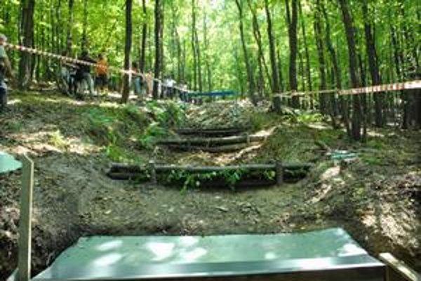Zvážnice v lese pomáhajú odviesť vodu.