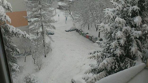 Gerlachovská ulica