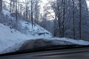 Odhrnutá lesná cesta na skratke. Nie je problém prejsť.