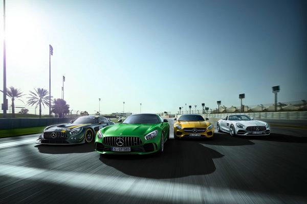"""""""Rodina"""" Mercedes AMG GT"""
