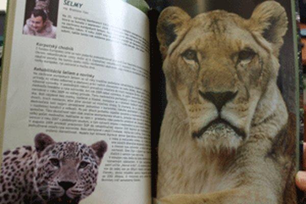 Výročná správa bojnickej zoo má atraktívny vzhľad.