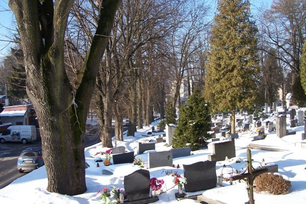 Šesť stromov pri ceste smerom na Sklabiňu musia pre hroziace riziká vyťať.