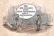 Povolaní a odvolaní (Vico)