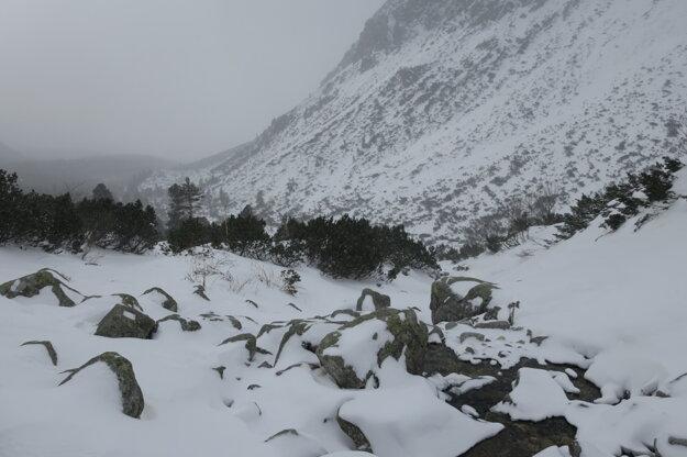 Snehu pomaly pribúdalo, nárazový vietor a prachový sneh nás sprevádzali cestou hore.