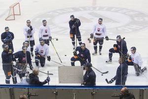 Slovenskí hokejisti počas zrazu.