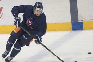 Na snímke slovenský hokejový reprezentant Marek Ďaloga počas tréningu v rámci štartu záverečnej prípravy pred MS, prvého sústredenia reprezentačného A-tímu a olympijského výberu 27. marca 2017 v Bratislave.