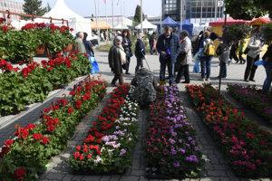 Medzinárodný veľtrh Záhradkár. Ilustračné foto.