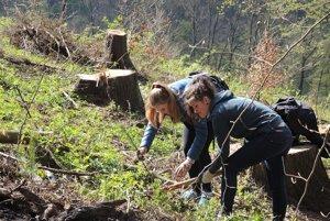 Práca vlese väčšinu študentov tešila.