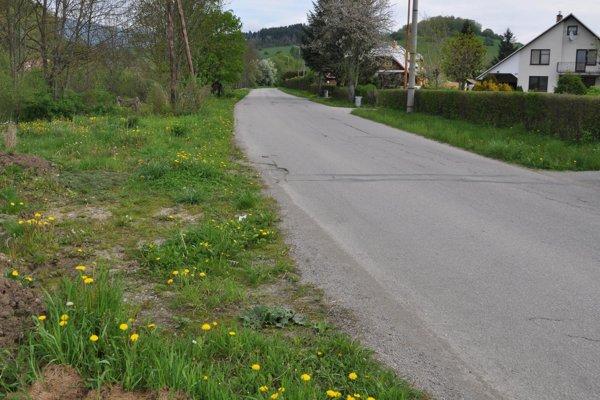 Vedľa cesty je dostatok miesta na chodník aj zelený pás.