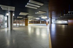 V roku 1999 krajský úrad odobral Istropolisu status kultúrneho centra, nehnuteľnosť preto stratila právnu ochranu. Nie je ani kultúrnou pamiatkou.