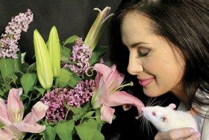 Žena a potkan spoločne skúmajú senzorický svet pomocou čuchu.