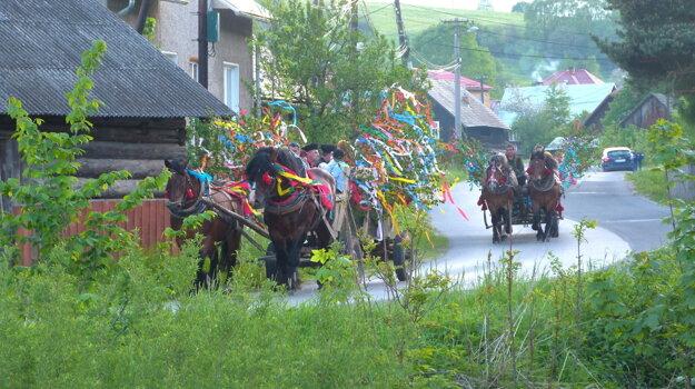 Váľanie mája vo Vysokej nad Kysucou.