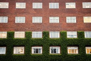 Časť ľudí, ktorí majú OCD, cíti nutkavú túžbu po symetrii a organizácii.
