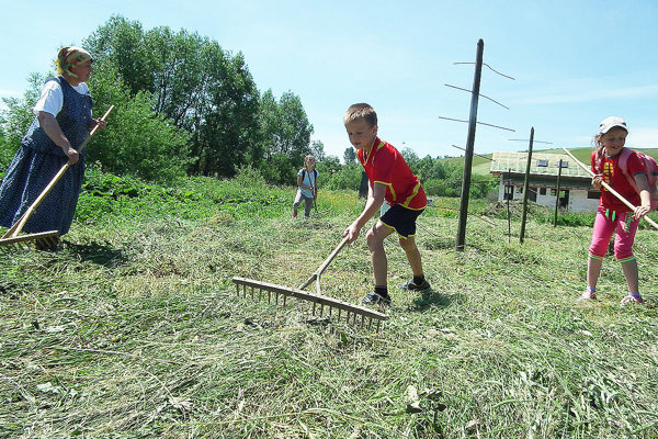 Vierka Jaššáková ukazuje deťom, ako správne roztrepať pokosené riadky trávy.