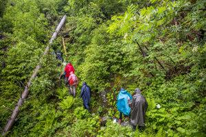 Terén v pralese v daždi je zradný, kamene a drevo sú šmykľavé a človek ľahko padne do dier po vyhnitých stromoch.