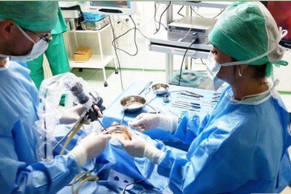 Klinika dostala od sponzora aj nový ultrazvuk vhodnote 50-tisíc eur.