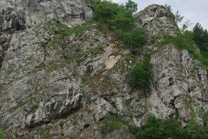 Práce na odstraňovaní brala pod hradom Strečno.